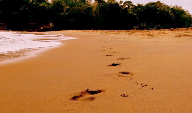 Kriba sable jaune -plage Cameroun
