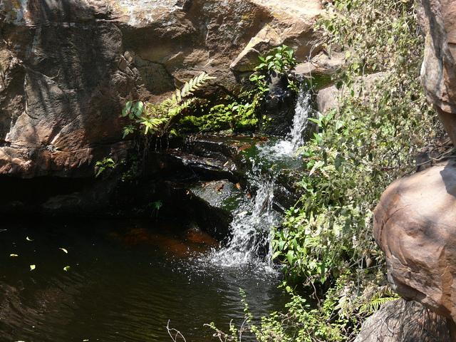 Moremi Gorge - Botswana