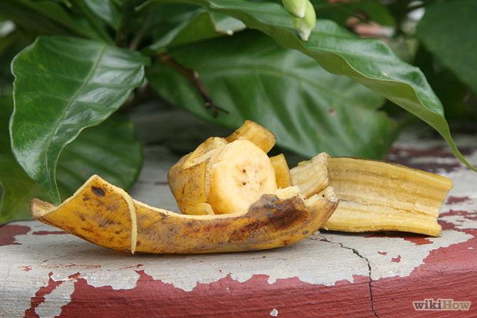 Utiliser les pour attirer papillon jardin - Use-Banana-Peels