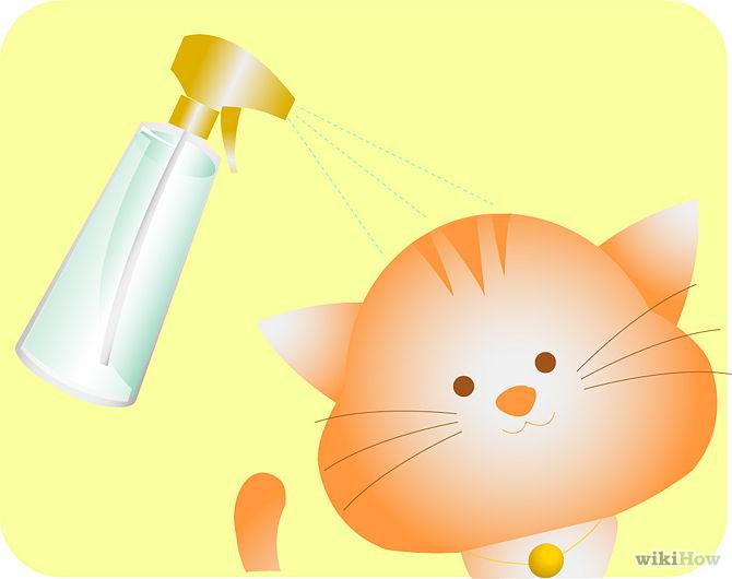 Vaporisez sur votre animal de compagnie-Spray-on-your-pet-Step-4