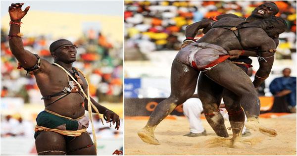 Danse musique for Interieur sport lutte senegalaise