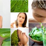 7 avantages de l'Aloe Vera pour les cheveux.