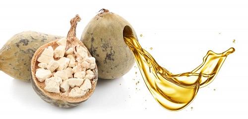 huile-de-baobab-graine