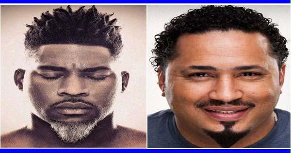 C est une barbe qui tire son nom du c l bre peintre - Barbe homme noir ...