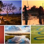 Découverte du Delta de l'Okavango | Voyage Botswana
