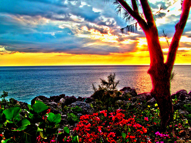 Negril Jamaica west end cliffs sunset