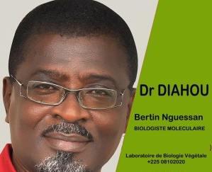 Dr Diahou Bertin Nguessan