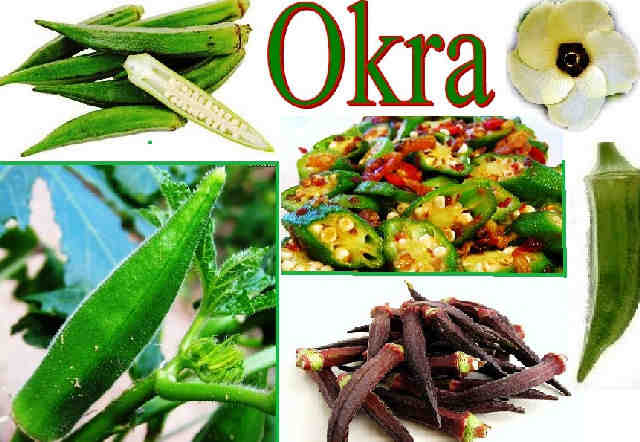 okra-health-benefits