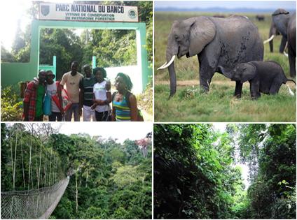 Parc national du Banco abidjan